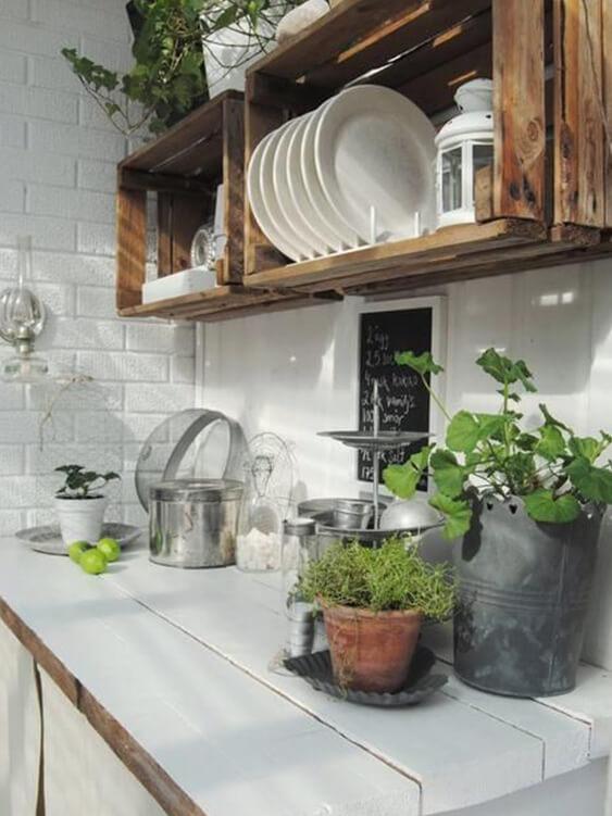 cuisine avec plantes