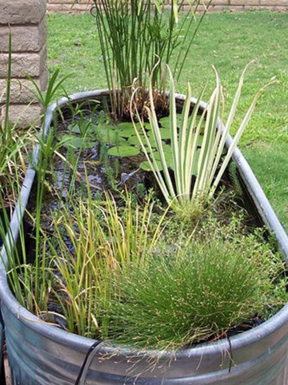 baignoire zinc jardin
